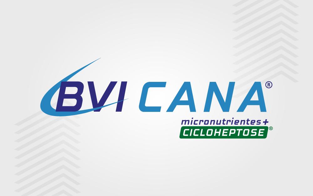 BVI CANA