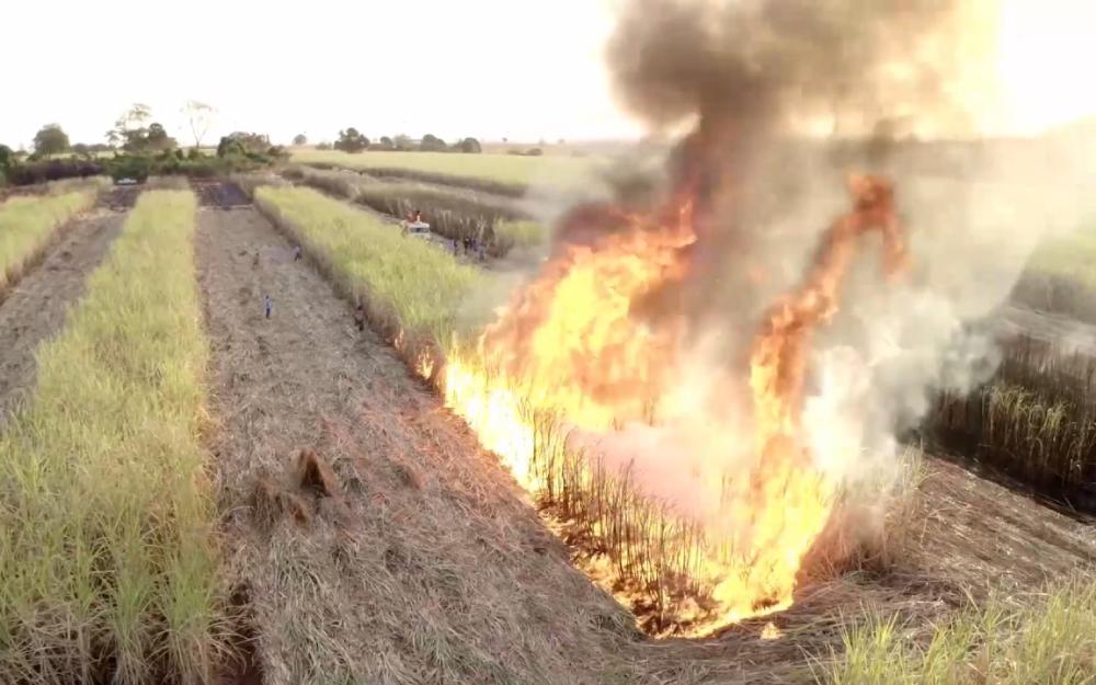 Conheça a tecnologia nacional que combate incêndios