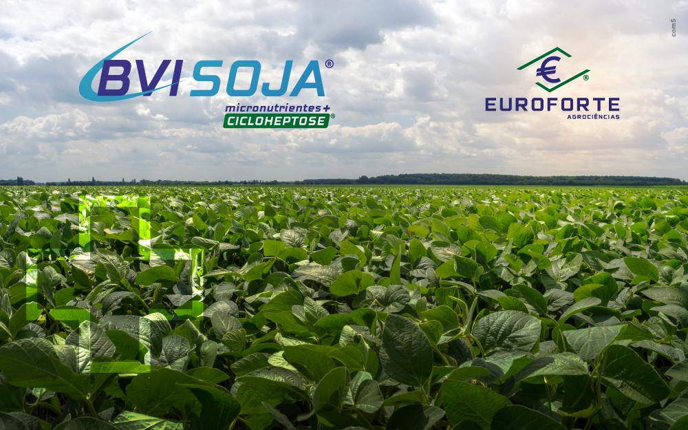BVI-SOJA: o máximo potencial produtivo na cultura da soja