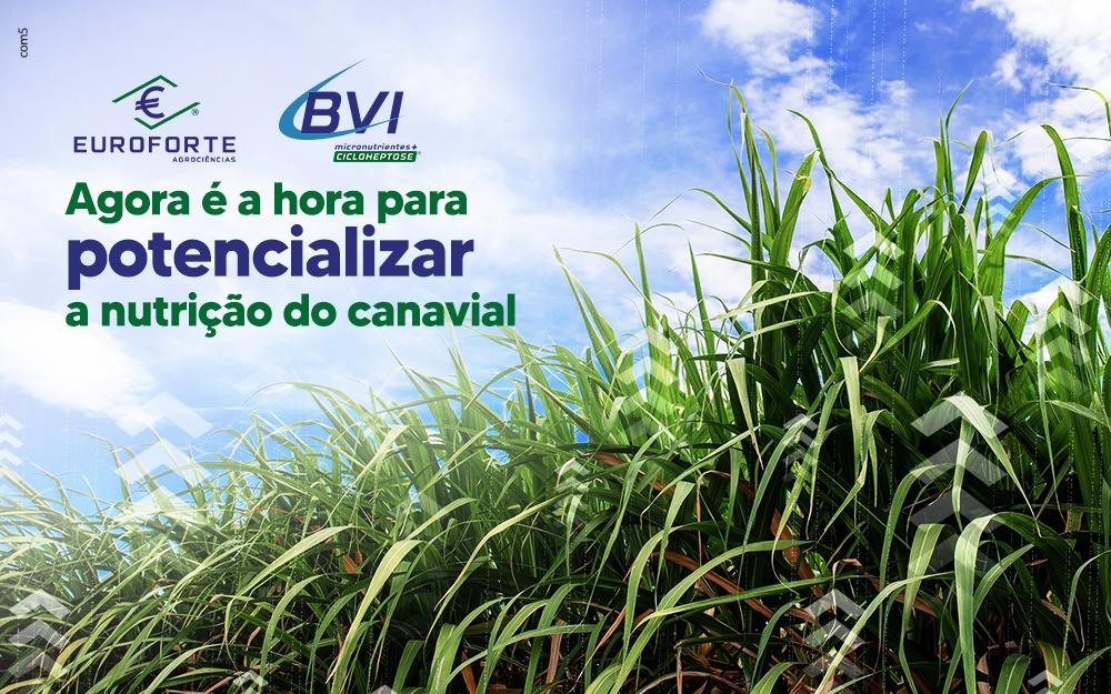 Momento BVI: agora é a hora para potencializar a nutrição do canavial