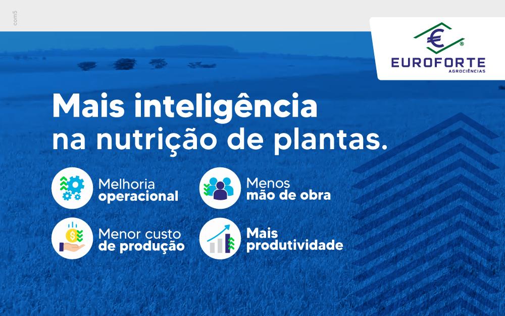 Como simplificar operações e melhorar a produtividade agronômica